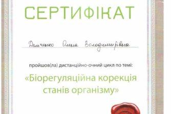 Демченко Елена - сертификат 2