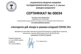Бегларян Илона сертификат 16