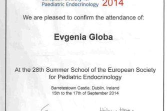 Глоба Евгения Викторовна - сертификат 8