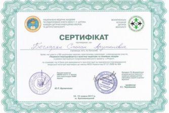 Бегларян Степан - Сертификат 7