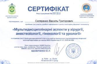 скляренко сертификат 10