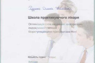 Руденко Елена - сертификат 8