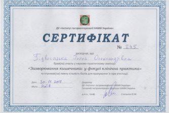 гастроентеролог анна підвисоцька взяла участь у науково-практичному семінарі