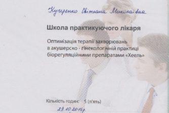 кучеренко світлана миколаївна закінчила школу практикуючого лікаря