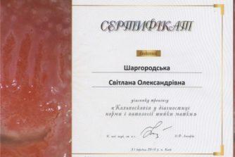 гінеколог шаргородська отримала сертифікат із кольпоскопії