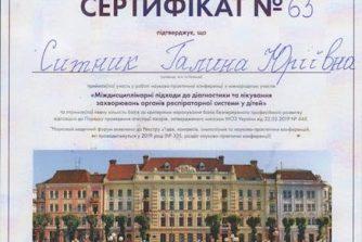 сертификат_Ситник