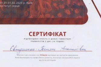 Евтушенко Татьяна Анатольевна сертификат 2