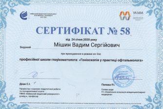 Мишин Вадим Сергеевич сертификат