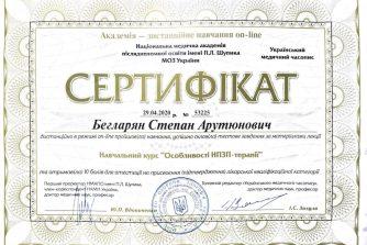 Бегларян Степан сертификат11