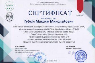 Сертифікат Губкін Максим